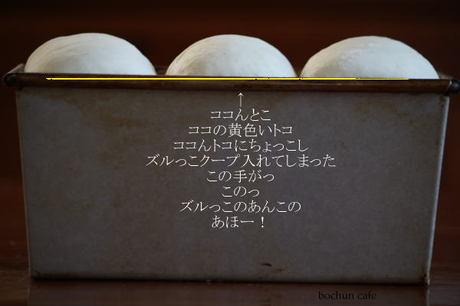 Img_0514_2
